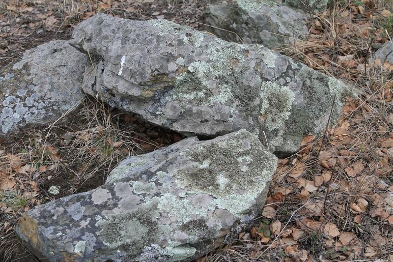 Камень змеевик: разновидности и свойства
