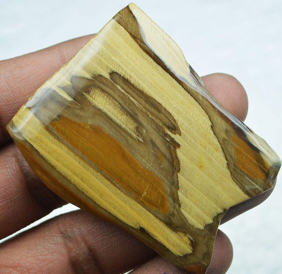 Магические и целебные свойства окаменелого дерева